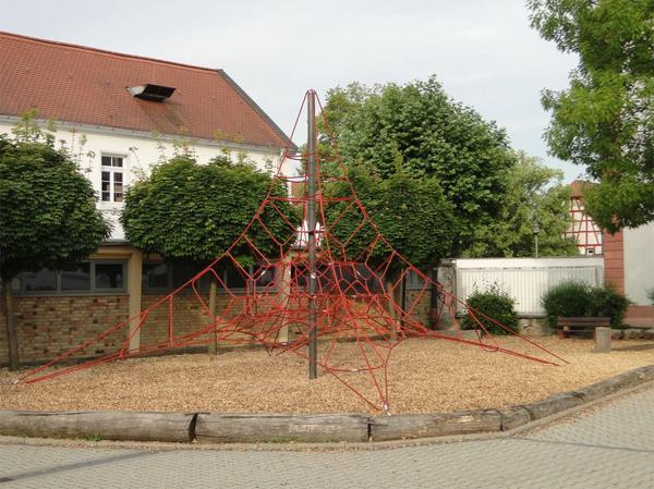 Startseite Kletterspinne.jpg